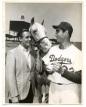 Koufax Mr. Ed (1)
